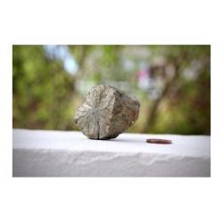 specimen de pyrite