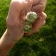 Stick / Vogel quartz biterminated guaranteed 100% pure 24 facets