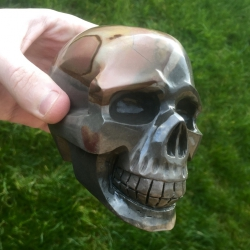 Skull (artisanal)