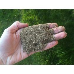 Limaille / poudre de bronze (2kg)
